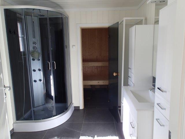 Łazienka z prysznicem i sauną