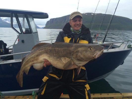 big codfish2